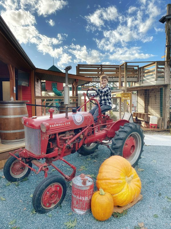 abbotsford pumpkin patch - Taves Family Farm Applebarn