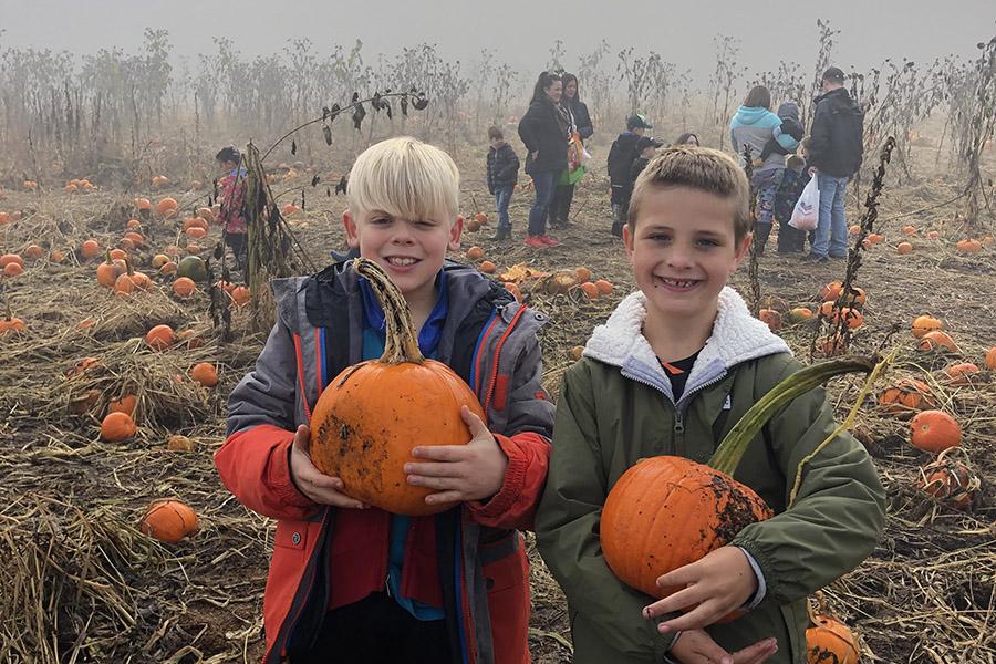 Best pumpkin patch langley