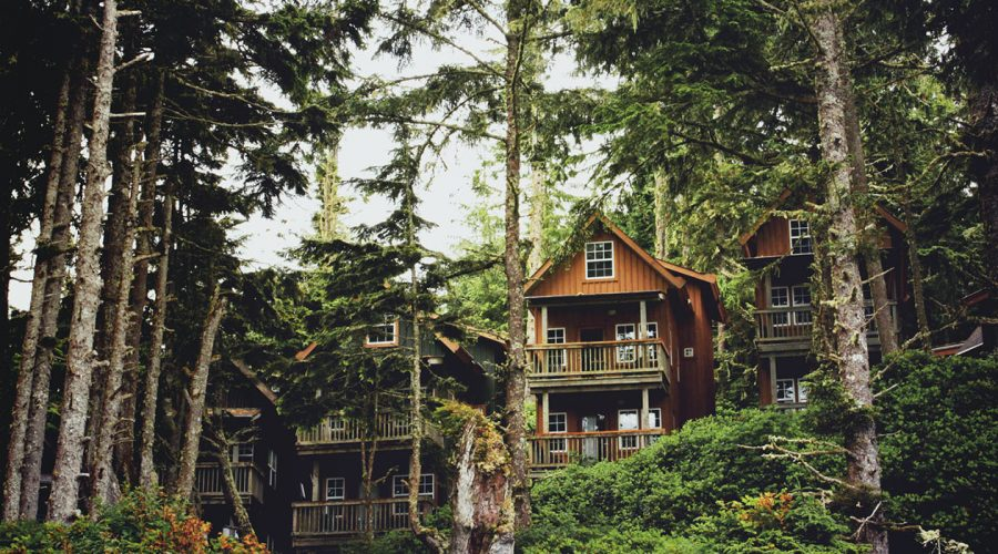 Ucluelet AirBNB Vancouver Island