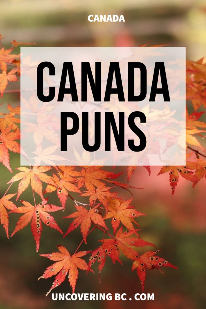 Canada Puns and Canada Jokes.